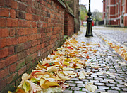 Time For Change Prints - English Autumn Cobblestones Print by David Dunne