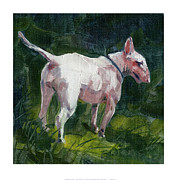 Bull Terrier Paintings - English Bull Terrier by Chris Pendleton