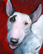 White Dog Framed Prints - English Bull Terrier Looking Up on Red Framed Print by Dottie Dracos