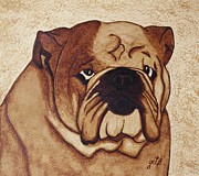 English Bulldog Paintings - English Bulldog coffee painting by Georgeta  Blanaru