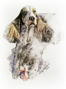 English Cocker Spaniel Posters - English Cocker Spaniel Danny Poster by Linda Zielinski