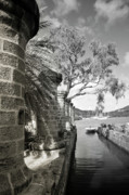 Tropical Photographs Photo Originals - English Harbour by Diego Pagani