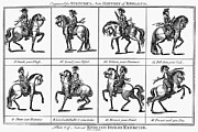 Spencer Prints - English Horse Exercise Print by Granger