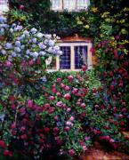 Rose Bushes Posters - English Manor House Roses Poster by David Lloyd Glover
