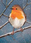 Branches Pastels Posters - English Robin in Snow Poster by Joyce Geleynse