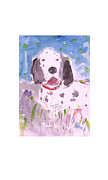Setters Prints - English Setter Print by Samuel Zylstra