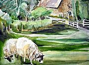 Great Britain Originals - English Sheep by Mindy Newman