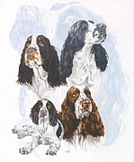 Canine Mixed Media Prints - English Springer Spaniel Print by Barbara Keith