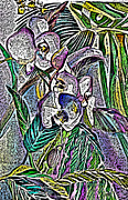 Rain Digital Art - Engraved Orchids by Mindy Newman