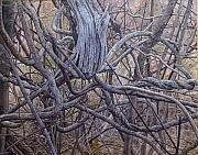 Abstact Realism Paintings - Entanglements by James Sparks