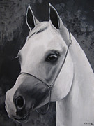 Horse Head Paintings - Equestrian Silver by Kayleigh Semeniuk