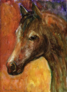 Oil Drawings - Equine Horse painting  by Svetlana Novikova