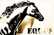 Man Cave Licensing Mixed Media Posters - Equus Horse Juvenile Licensing Poster by Anahi DeCanio