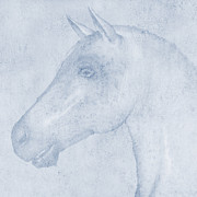 Herbivore Prints - Equus Print by John Edwards