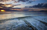 Puget Sound Prints - Eroded by the Tides Print by Mike  Dawson