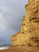 Beds Photos - Eroded Cliffs At Burton Bradstock by Adrian Bicker