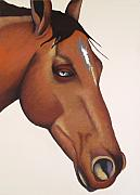 Horse Art - Eros by Brenda Wolf