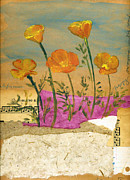 Californian Mixed Media Framed Prints - Eschscholzia Framed Print by Sorana Tarmu