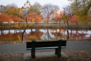 Charles River Framed Prints - Esplanade View Framed Print by Susan Cole Kelly
