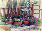 Essence Framed Prints - ESSENCE of Lanesboro Framed Print by Bill Tiepelman