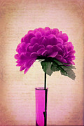 Flower Still Life Photo Posters - Estillo - 06t11 Poster by Variance Collections