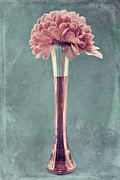 "\""textured Floral\\\"" Framed Prints - Estillo Vase - s01v4b2t03 Framed Print by Variance Collections"