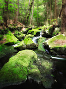Cascading Water Prints - Etheral Forest Print by Bill  Wakeley