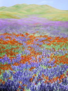 Meadow Flowers Originals - Ethereal Meadow by Mary Taglieri