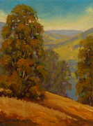 Steven Guy Bilodeau - Eucalyptus In Summer