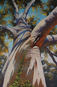Eucalyptus Paintings - Eucalyptus Portrait by Graham Gercken