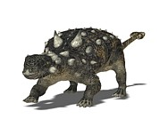 Ankylosaurus Prints - Euoplocephalus, Artwork Print by Friedrich Saurer