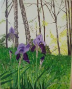Eureka Springs Irises Print by Sharon  De Vore