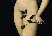 Adam And Eve Metal Prints - Eve Metal Print by The Elder Lucas Cranach