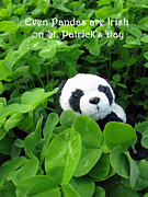 Patricks Day Card Framed Prints - Even Pandas are Irish on St. Patricks day Framed Print by Ausra Paulauskaite
