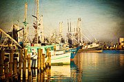 Shrimp Boat Photos - Evening Harbor by Joan McCool