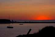 Dennis Ma Art - Evening Harbor Silhouette by Douglas Armstrong