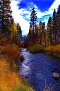 Hatch Prints - Evening Hatch on the Metolius River Photograph Print by Diane E Berry
