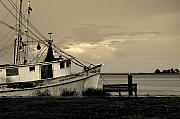 Shrimp Boat Prints - Evening in the harbor Print by Susanne Van Hulst