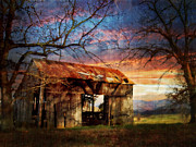Rockbridge County Posters - Evening Light Poster by Kathy Jennings