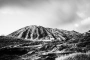 Evening On Koko Crater Print by Charmian Vistaunet
