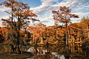 Big Cypress Bayou Photos - Evening On Mill Pond by Lana Trussell