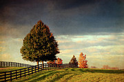 United States National Register Of Historic Places Photos - Evening Pasture by Susan Isakson