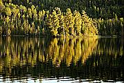 Boundary Waters Canoe Area Wilderness Photos - Evening Reflections on Alder Lake by Larry Ricker