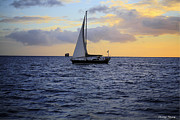 Sunset Sailing Prints - Evening Sail Print by Cheryl Young
