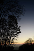 Evening Silhouette At Sunset Print by Bruno Santoro