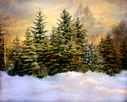 January Prints - Evening Snow Print by Jai Johnson