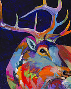 Bull Elk Prints - Evening Sounds Print by Tracy Miller
