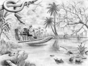 Florida Drawings - Everglades Florida by Murphy Elliott