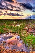 Miami River Photos - Everglades Twilight by William Wetmore