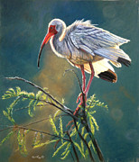 Bird Pastels Prints - Everglades Vision Print by Deb LaFogg-Docherty